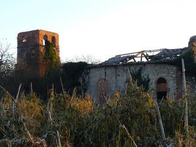 Forn del Pla d'Avall (La Farga)_jpg