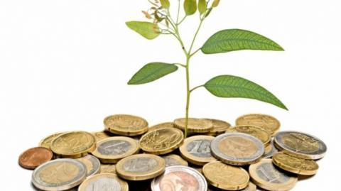 Subvencions a entitats