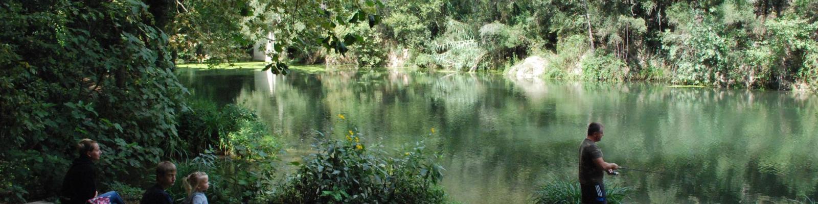 Medi ambient i Natura